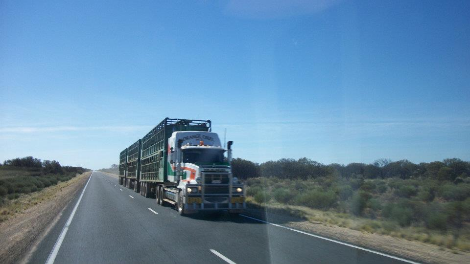 Roadtrain on the drive to Alice Spring