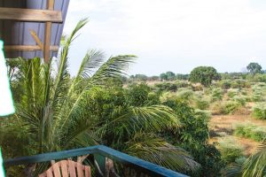 THe view from our tree house near Yala National Park.